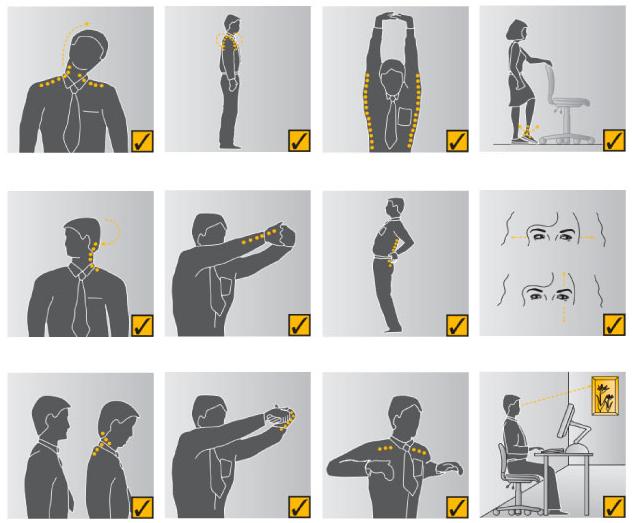 Гимнастические упражнения для работников офисов